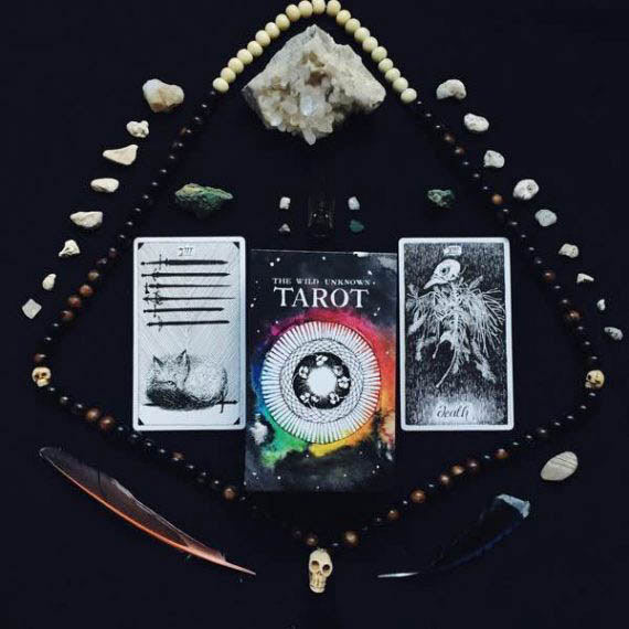 The_Wild_Unknown_Tarot_08