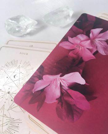soul cards tarot pink deck