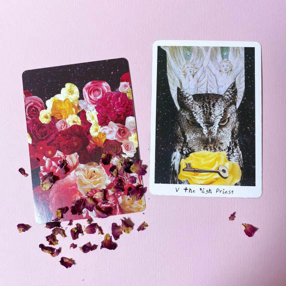 The Lioness Oracle tarot