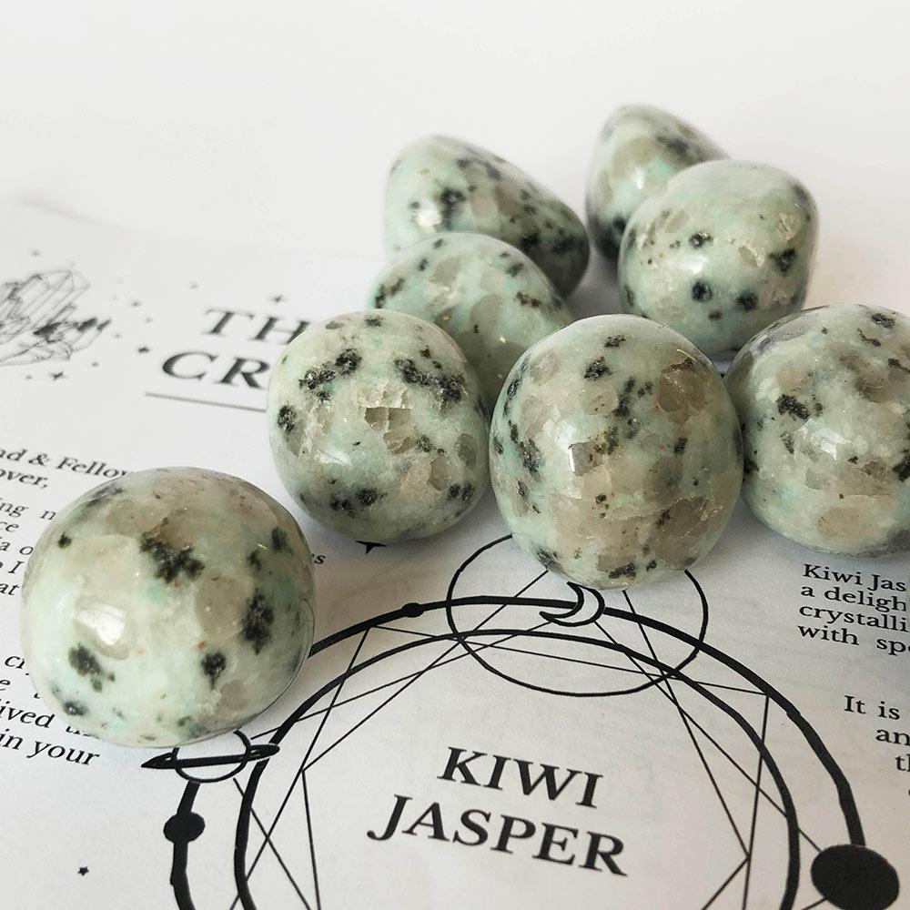 Kiwi Jasper Egg