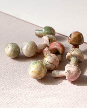 rhodonite mushroom medicine