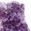 Royal Amethyst Cluster