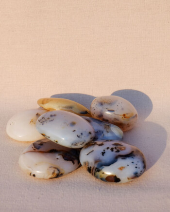 House of Formlab Dendritic Agate Meditation Stones